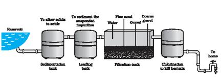 Fabulous Draw A Labelled Diagram For Water Purification System In Water Works Wiring Cloud Usnesfoxcilixyz