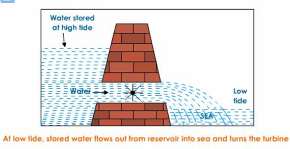 Explain the working of tidal energy power plant with a neat    diagram     CBSE Class 9  Learn CBSE