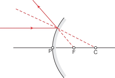 Draw A Ray Diagram To Show Reflection Of An Incident Ray Parallel To