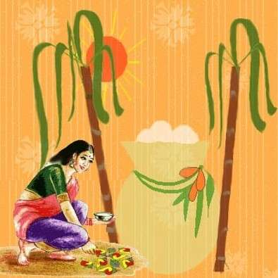 Pongal: The Thanksgiving Festival