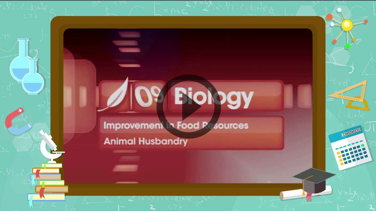Improvement in Food Resources - Animal Husbandry - 1