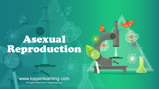 Reproduction in Organisms - Asexual Reproduction