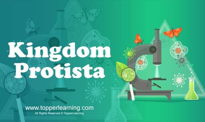 Kingdoms: Monera and Protista ,Kingdoms: Monera and Protista