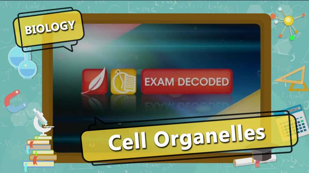 Cell - The Fundamental Unit of Life - Exam Decoded 3