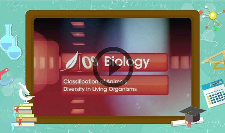 Classification of Animals - Classification of Animals - Exam Decoded 1