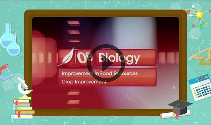 Crop Protection Management
