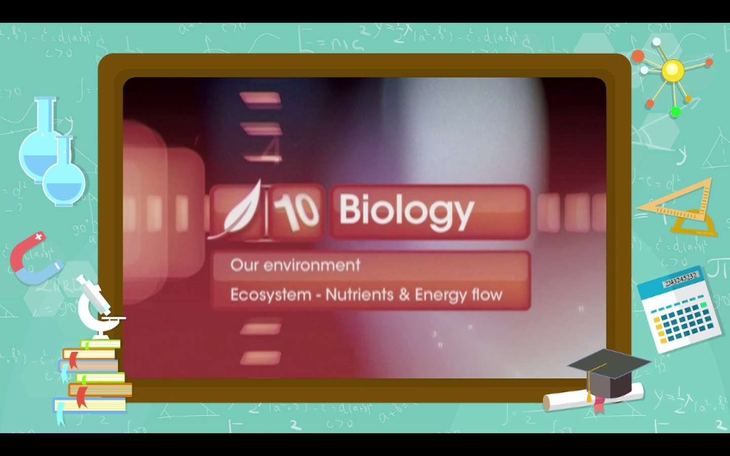 Environment - Ecosystem - Nutrients and Energy Flow
