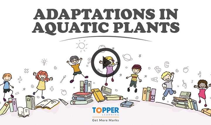 Adaptation - Adaptations in Aquatic Habitat