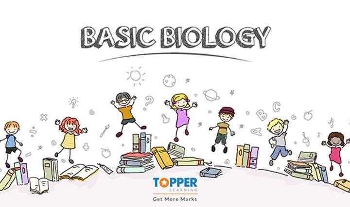 Basic Biology - Basic Biology