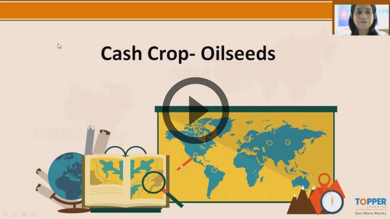 Agriculture in India II-Cash crops - Agriculture in India II-Cash crops