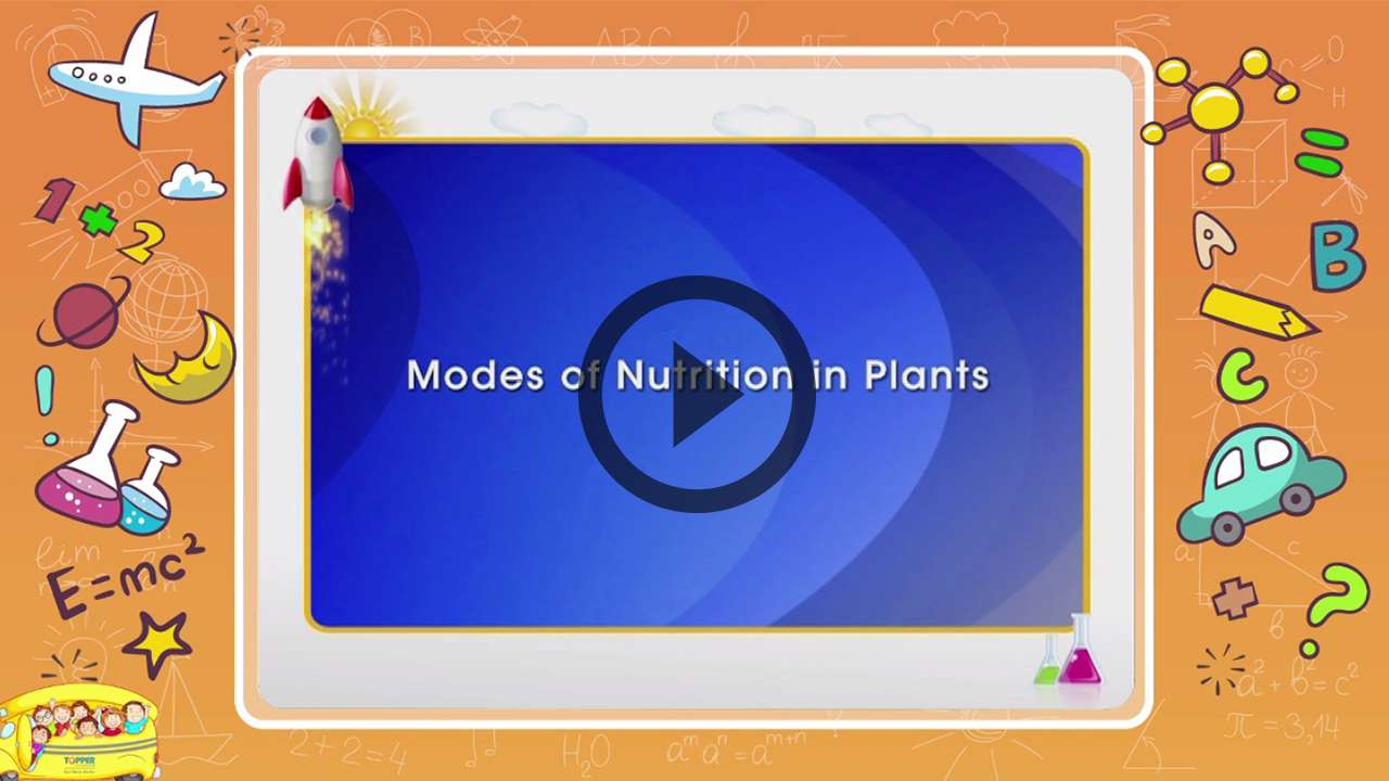Modes Of Nutrition In Plants Modes Of Nutrition In Plantstopic