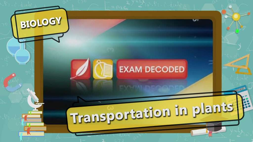 Transport in Organisms - Transport in Plants - Exam Decoded