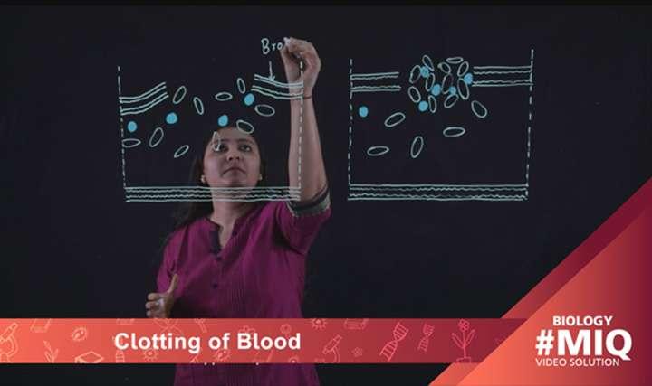 Clotting of blood -