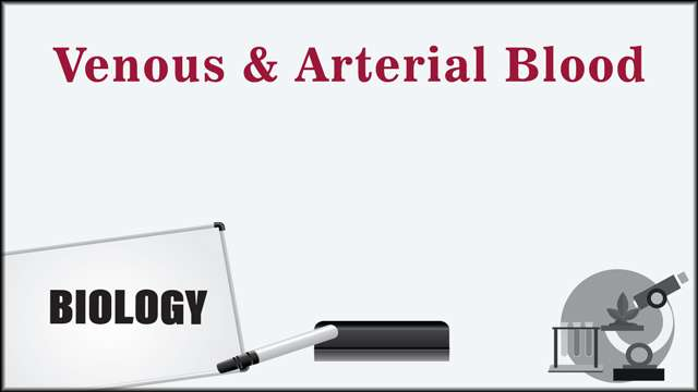 Venous and Arterial Blood -