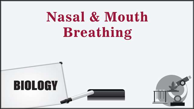 Nasal and Mouth Breathing -