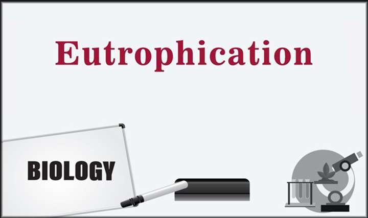 Eutrophication -
