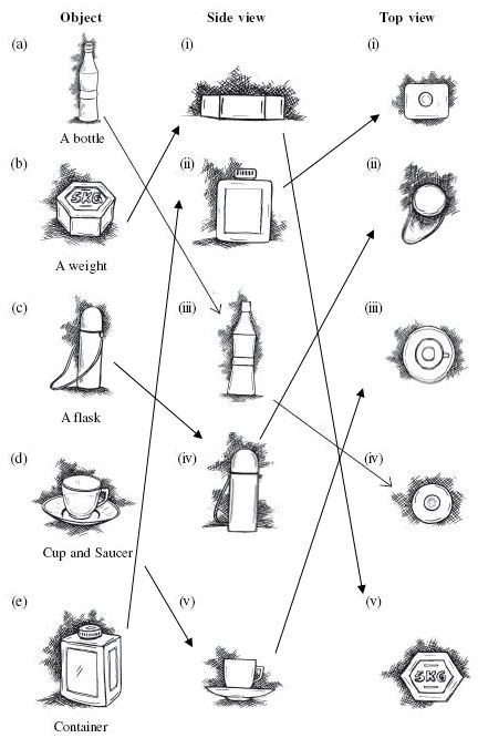 Ncert Solutions Cbse Class 8 Mathematics Chapter - Visualising Solid Shapes