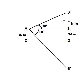 Selina Solutions Icse Class 10 Mathematics Chapter - Heights And Distances