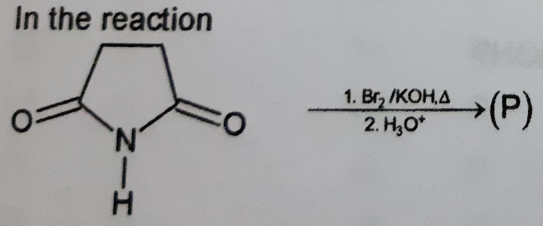 Questions and Answers of Amines Properties Of Amines of CBSE