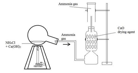 Selina Solutions Icse Class 10 Chemistry Chapter - Study Of Compounds B Ammonia