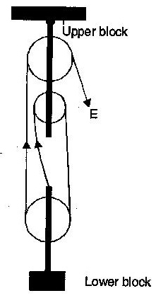 a block and tackle pulley system has a velocity ratio 3 i