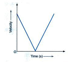 draw a velocity versus time graph for a stone thrown vertically