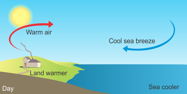 please explain what is land breeze and sea breeze with a diagram