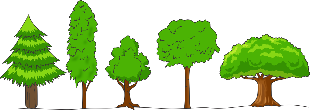 what is meant by crown of a tree draw any four shapes of tree crowns seen in forest - Science - TopperLearning.com | 5n4w73hnn